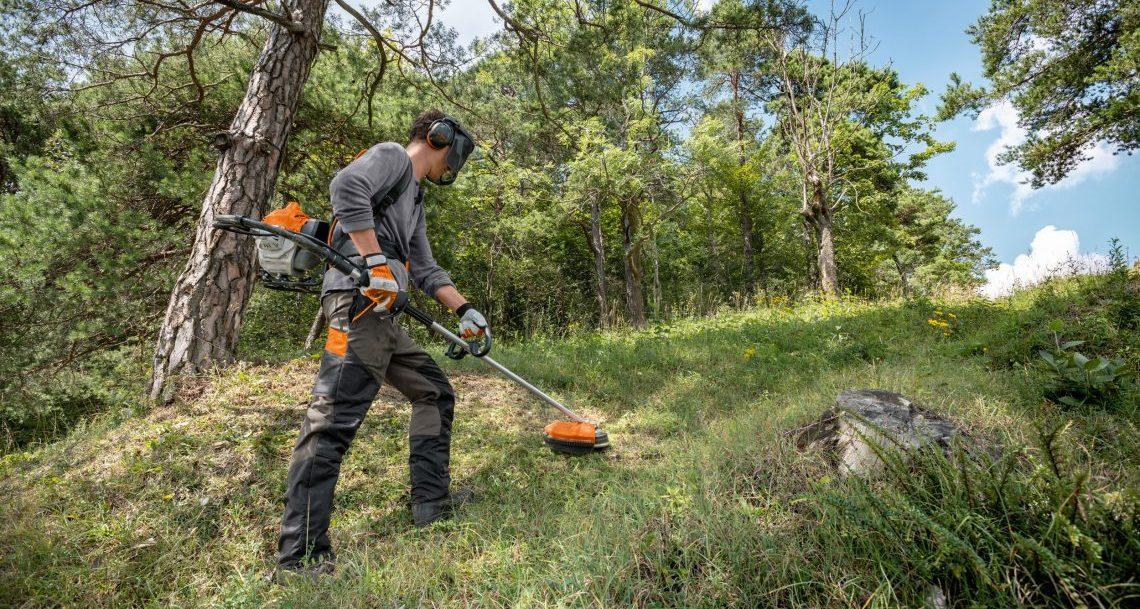 雑草に悩む林業者必見! 知っておきたい刈払機の賢い選び方とは?の画像